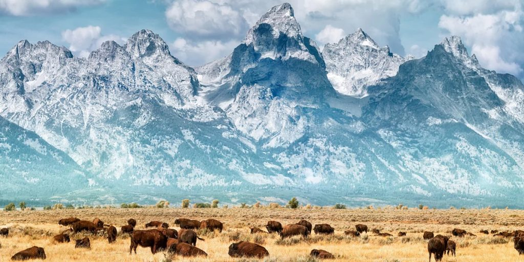 Five Epic National Parks