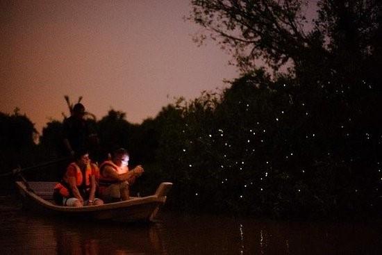 Kuala Selangor & Fireflies