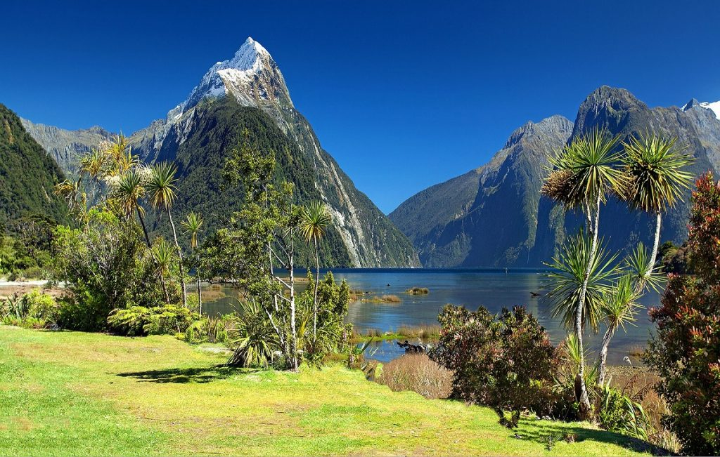 9D8N Essential New Zealand