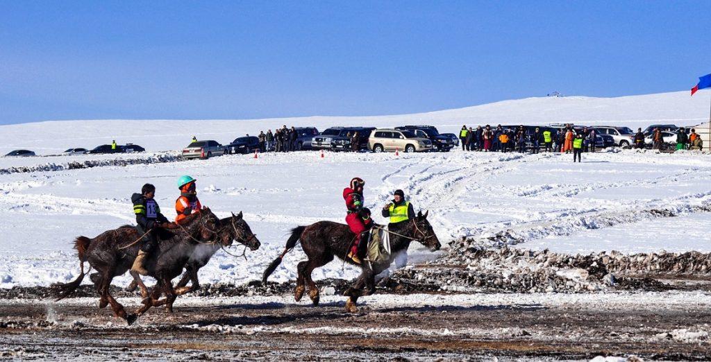 6D5N Winter Horse Festival
