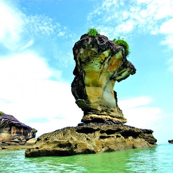 4D3N Borneo Package