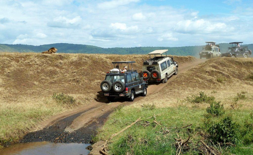 8D7N Tanzania Royal Safari
