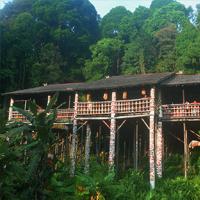 4D3N Bario Highlands (Visit Longhouse)